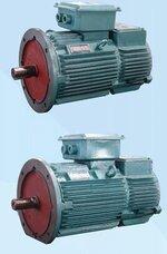 冶金用电动机,绕线转子电机,三相异步电机,南京特种电机