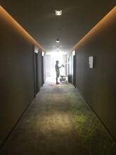 顺德区酒店地毯除味公司