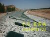 河道景观防汛固滨笼护岸防洪护坡绿滨垫厂家