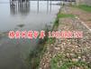 洞庭湖治理防洪格宾网护坡生态环保绿滨垫