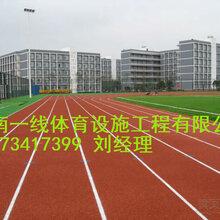 醴陵塑胶跑道材料性比价高醴陵塑胶跑道施工优惠价格图片