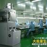 厂家直销工业电金属粉压片机