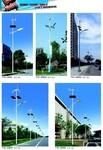扬州润熙照明科技有限公司直销6-10太阳能路灯图片