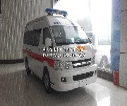金杯大海狮2TR监护型救护车图片