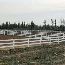 供应全国厂家直销PVC护栏型材、马场护栏、高强度环保材质热销精品栅栏