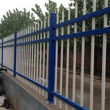 佛山鋅鋼護欄廠家生產小區圍墻護欄使用十年學校鐵藝護欄圖片