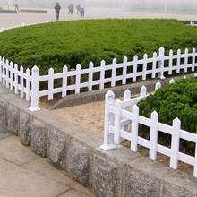 惠州市pvc草坪护栏塑钢栅栏花园围ω栏仿古纹护栏简易安装图片