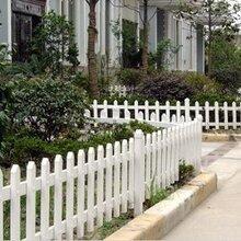 江门市厂家现货供应pvc护栏/50公分高草坪护栏/塑钢护栏规格单价图片
