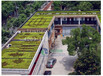 屋顶绿化花盆/屋顶花园专用花盆厂家/朗汀园林屋顶绿化
