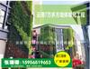 室外墙体绿化专用种植盒厂家