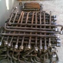 地脚螺栓地脚螺栓材料买各种材质地脚螺栓-地脚螺栓厂图片