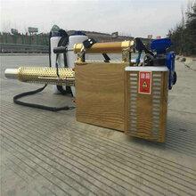 农用大棚喷药机菜市场手推消毒喷雾机汽油手推式喷洒机