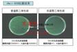 抗菌塑料的开发及应用前景