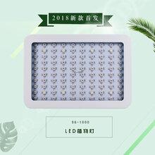 承越科技跨境货源SG-1000w新品LED植物生长灯大棚室内瓜果育苗生长补光灯