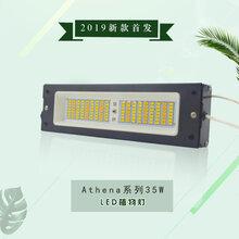 承越科技led植物生长灯具大棚室内花卉多肉盆栽补光上色补光灯