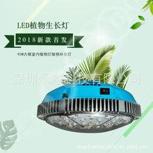 led特殊照明灯厂家大鹏室内种植蔬菜瓜果补光灯led植物生长补光日照灯具