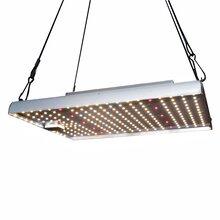承越2代量子板LED植物生长灯大功率种植补光灯温室花卉日照灯