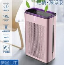 乐然空气净化器家用氧吧除雾霾PM2.5除甲醛(家音)
