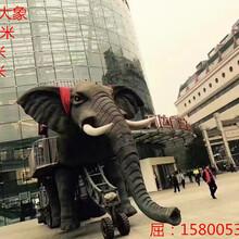 贵阳机械大象巡游出租价格机械大象厂家