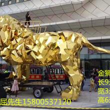 天津机械大象出租金狮出租租赁厂家