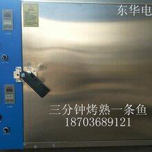 郑州专业生产电烤箱厂家东华电烤箱一次烤四条三分钟烤熟图片