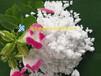 菏澤硒金農業Al2O30.74%硅鈣肥Sio>21.6%硅酸鈣肥Sio49.1%