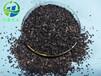 广元黄金椰壳活性炭厂家优惠促销