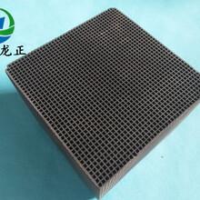 廣州龍正廢氣治理蜂窩活性炭廠家歡迎圖片