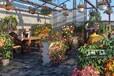 最新消息嘉兴月河印巷近期推出二院对面小面积商铺