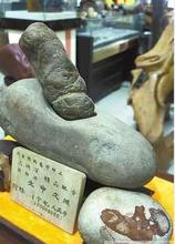 北京战汉古玉和红山文化和田玉权威鉴定拍卖机构图片