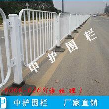 市政护栏安装周期道路护栏网乐东街道隔离栏杆图片