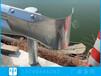 東莞波形梁護欄廠家公路防撞護欄安裝雙波護欄板圖片