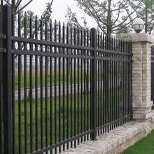 惠州手机厂区围墙栏杆围墙立柱锌钢栅栏顶部拍尖铁护栏图片