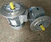 紫光电机-MS6322图片