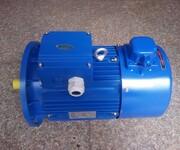 紫光电机/MS90S-2图片
