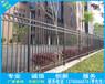 南宁锌钢栅栏西乡塘大学护栏琅东小区围墙护栏网定做