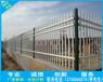 广西工程生活区护栏南宁动物园围栏网来宾栅栏厂