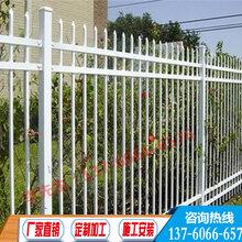 广州制药厂厂区栅栏中山工厂围墙围栏惠州护栏厂
