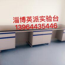 济南钢木实验台全钢通风柜分析仪器厂家英派专业生产图片