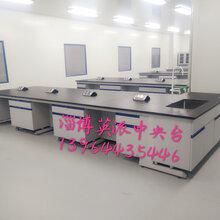 东营实验台通风柜天平台实验分析仪器厂家英派专业生产图片