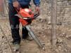 批发供应进口挖树机