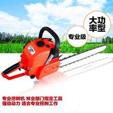 便携式手提式挖树机链条带土球移值机挖树机规格齐全图片
