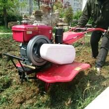蔬菜大棚开沟培土机小型田园管理机图片