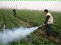 天津大功率弥雾机果树喷药杀虫用汽油弥雾机图片