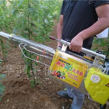 射程远效率高的果树杀虫专用弥雾机图片