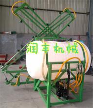 全新自走式喷雾器高扬程高效高压喷雾器图片