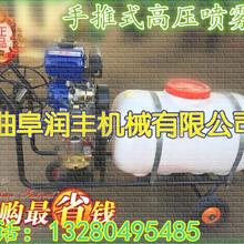 自走式打药机小区绿化打药机行走自如喷雾器大棚手推式喷雾器图片