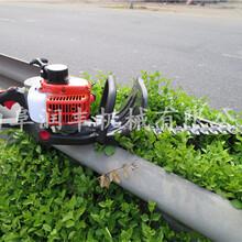 汽油绿篱修剪机单双刃绿篱修剪机全方位无死角修剪机图片