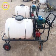 果園高壓遠射程噴霧器手推式拉管農藥噴灑器圖片