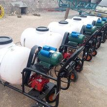 農業專用拉管式噴霧器小型果園手推式電動打藥機圖片